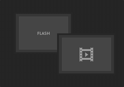 Flash Module & Media Playback Module